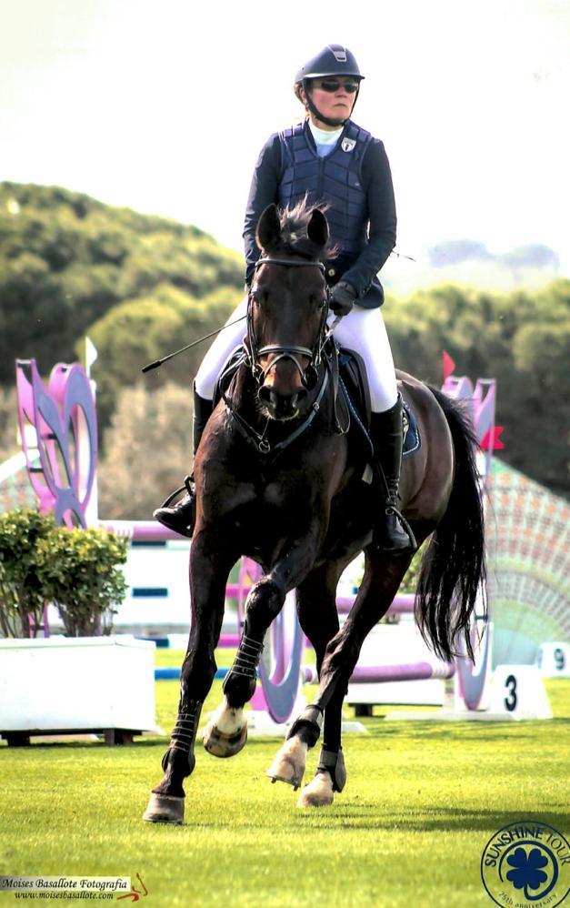 Ratsastaja hevosen selässä esteratsastuskilpailuissa